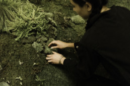 lady touching moss in the wilderness