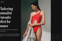 Wall Street journal features swimsuits